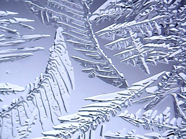 vlcsnap-2016-02-11-16h55m51s106