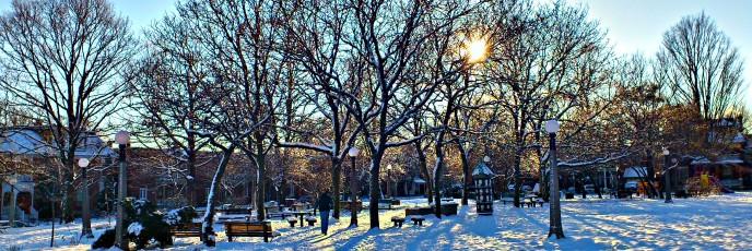 Dundonald Park HDR 2011